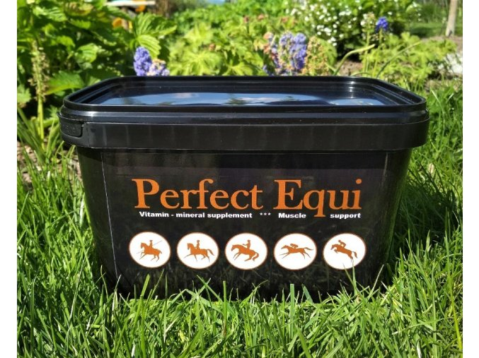 Perfect Equi 3kg